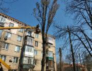 ЖЕД № 901: санітарна обрізка дерев