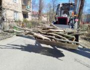 ЖЕД № 901: вивезення деревини
