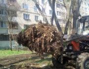 ЖЕД № 901: вивезення опалого листя